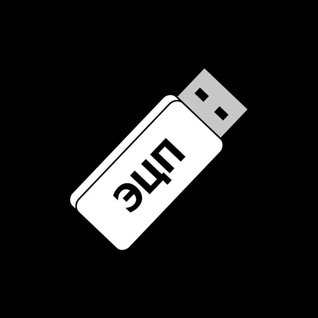 Электронная цифровая подпись в виде USB-носителя с ключом